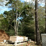 Casketed Natural Burial
